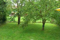 sonniger Südgarten